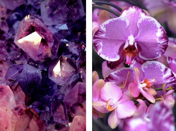 Radiant Orchid, color of 2014, pantone